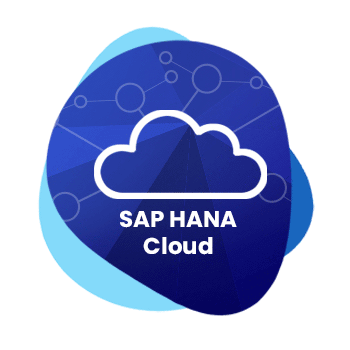 On-Cloud-ERP---S4-HANA