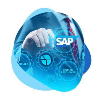 SAP-in-Professional-Services